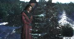 ♥ Found the Tree (Quistis Shippe) Tags: animation bento cap couple couplepose exile hair hat hazeel hazeelposes longhair love mesh pose prop secondlife snow sweet tender tree winter winterholidays