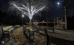 No more playing the Blues. (alundisleyimages@gmail.com) Tags: chester christmas waterfront riverdee jubileebridge cheshire benches steps night longexposure moon moonlight shadows fallenleaves streetlight trees bandstand christmaslights illumination quiet peaceful england city romancity historiccity tourism