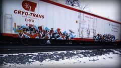osek - kaya (timetomakethepasta) Tags: osek kaya kfw freight train graffiti art cryo cryotrans cryx reefer
