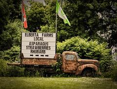 Elberta Farms Truck (HTT) (13skies) Tags: singleshothdr advertisement truck htt sitting elbertafarms osbornecorners older relic antique flags trees rusted work happytruckthursday truckthursday highway highway5 sony