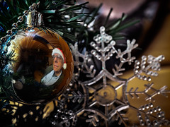 selfie in a Christmas Ball (wwnorm) Tags: holidaydecorations wah holiday ornaments picaday2019 selfie werehere