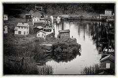 fantasy village (Bluescruiser1949) Tags: fantasy village newfoundland canada blackandwhiteversion blackwhitelandscapephotography miniature stream photoop miniaturevillage