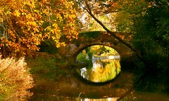 Reflections (Englepip) Tags: water amber light fall leaves colour autumn sunlight bridge reflecting canal