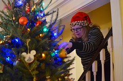Decorating The Tree (Joe Shlabotnik) Tags: home justsue 2019 christmas december2019 sue christmastree afsdxnikkor35mmf18g