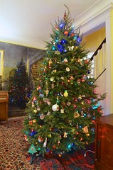Our 2019 Christmas Tree (Joe Shlabotnik) Tags: christmastree december2019 christmas home 2019 samyangae14mmf28edasifumc