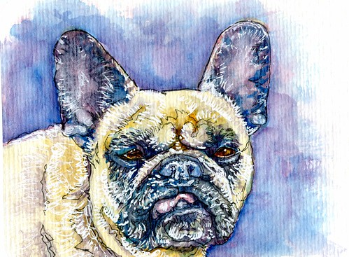 French Bulldog-Postcards for the Lunch Bag
