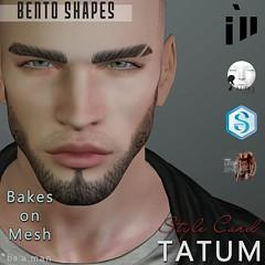 TATUM (illreadyscw) Tags: ill illshop lelutka lelutkaguy guy head ears eyes eyebrow eyebrows beard mesh bekesonmesh signature legacy bento shape shapes ready
