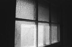i'm wide awake; it's morning (nikku_neko) Tags: kodaktmax tmax expiredfilm 35mm film texturedglass texture glass morning light window
