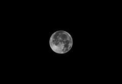 Pleine lune du matin (jjcordier) Tags: lune pleinelune noiretblanc