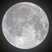 Full Moon at 12.12am on 12/12, 12 Dec 2019 (photography.by.ROEVER) Tags: kansas johnsoncounty joco kcmetro kansascitymetro olathe moon fullmoon lunar luna fullcoldmoon moonphoto moonphotograph moonphotography 1212on1212 2019 december december2019 usa