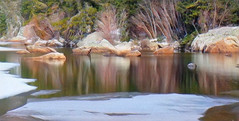 Winter Lake Reflections (scilit) Tags: nature scenery landscape reflections water snow ice winter rocks shrubs trees boulders wideangle linear