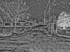 Scene From a Blizzard 3, variant (sjrankin) Tags: 12december2019 edited snow blizzard wind cold road houses roads trees lines wires poles neighborhood hdr grayscale