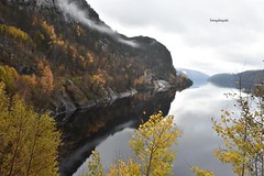 Autumndays in Norway, Rogaland (Tommysfotografie) Tags: behindthelens natureshot nature europe europa scandinavia scandinavie norge norvegia noorwegen norwegen norway rogaland fjordnorway fjord mountains mountainview baum boom arbor arbre trees tree reflectionperfection reflectionpicture reflectionshot reflectionphoto reflectionphotography reflection climbingclouds foggy cloudscape cloudslime clouds herbst herfst autumnvibes autumn autumndays landscapeshot landscapepicture landscapeperfection landscapephoto landscapeview landscapephotography
