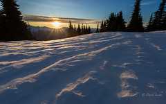 On my knees (D. Inscho) Tags: pacificnorthwest washington northcascades zeissdistagon15mm sunburst snow ultrawideangle