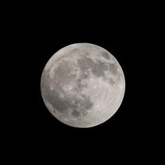 Photo of Full moon - December 2019