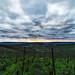 From the vines {Explore} (ZeGaby) Tags: champagne clouds irix15mm landscapes marne naturephotography paysagedechampagne paysages pentaxk1 sky vigne vignoble vines vineyards aÿchampagne france