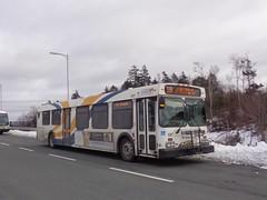 Halifax Transit 1087 (The Halifax Transit Fan!) Tags: hfxtransitroute39 hfxtransit1087 lacewoodbusterminal lacewoodterminal halifaxtransit newflyerd40lf newflyer transit transitbus bus halifaxmetrotransit hfxtransit