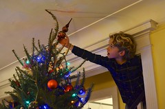 Everett Putting On The Star (Joe Shlabotnik) Tags: home 2019 justeverett december2019 christmas everett christmastree afsdxnikkor35mmf18g