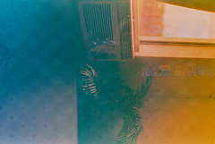OM074.00 (louis.r.zurn) Tags: 35mmfilm 35mm expiredfilm film filmphotography ishootfilm olympus35mm olympus om2n om2 50mmf14 zuiko50mmf14 zuiko svema redscale stemmaredscale25 fpp filmphotographyproject nocrop minnesota minnesotaphotographers minnesotastatefair stpaulminnesota stpaulmn minneapoliscamerameetup