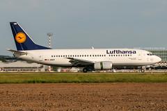 D-ABER (PlanePixNase) Tags: eddl dus dusseldorf düsseldorf airport aircraft planespotting lohhausen lufthansa boeing 737 737300 b733 733