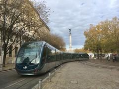 Quinconces, Bordeaux (ernstkers) Tags: streetcar trolley lightrail tree tram bordeaux bonde alstom citadis aps tranvia tramvia eléctrico strasenbahn spårvagn
