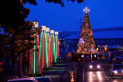 20191209-02-Hobart Christmas Tree (Roger T Wong) Tags: 2019 australia christmastree hobart mawsonplace rogertwong sel70300g sony70300 sonya7iii sonyalpha7iii sonyfe70300mmf4556goss sonyilce7m3 tasmania city night