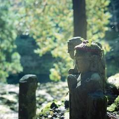 (Sachie♪) Tags: rolleiflex28f kodakportra160 120film 6x6 tachikuegorge shimanejapan