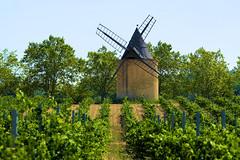 P1150121 (alainazer) Tags: ansouis vaucluse provence france ciel cielo sky moulin mulino moinhos mühlen mills windmill vigne vine
