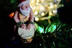 little drummer Santa (BusyBl.Mtns.Grandma) Tags: christmas tree lights santa hawaii drum instrument lookingcloseonfriday musicinstrument