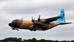 C-130 Hercules (Bernie Condon) Tags: riat airtattoo tattoo ffd fairford raffairford airfield aircraft plane flying aviation display airshow uk royaljordanianflacons flacons royaljordanianairforce walterextraea300 extra extraea300 ea300 formation team
