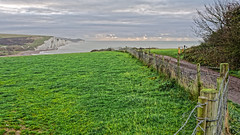 To The Beach (Croydon Clicker) Tags: footpath fence field grass hedge bush beach cliffs sky cloud sea ocean channel posts wire seaford cuckmerehaven sussex eastsussex nikon nikkoraf28105mmd