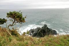 Paseo junto al mar  - EXPLORE December 12th, 2019 (Micheo) Tags: spain sendacosteranaviega asturias cantábrico sea water olas waves sendero explore ok best