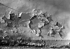 Omaggio ad Alberto Burri (Mattia Camellini) Tags: analog pellicola 35mm biancoenero blackandwithe monochrome sovietlens mattiacamellini mir24n235mm wall fomapan100 ilfosol3 nikonem