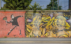Fiori contro l'odio (tullio dainese) Tags: 2019 bologna artedistrada graffiti muri muro outdoor strada strade street streetart streets wall walls