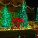 Dyker Heights, Brooklyn (#7)---SAM_7211 (waitingfortrain) Tags: christmas christmaslights dykerheights brooklyn nyc