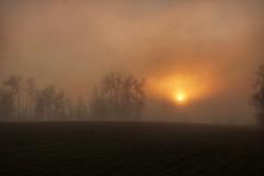 winter is coming (carmengonzalez23mayo) Tags: zamora spain landscape europe frog niebla naturaleza natural