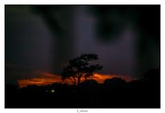 12.12.2019-Sunrise (Carlos E Cortés Parra) Tags: sunrise tree sun clouds landscape backlit