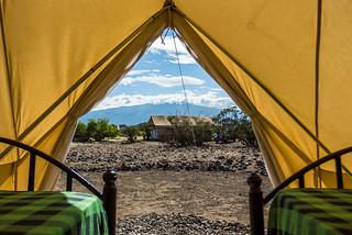 Bell Tent  | Africa Safari Lake Natron
