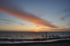 Sunrise over the North Sea (Kirkleyjohn) Tags: suffolk sunrise cloud eastanglia sea seashore seascape groyne water waves beach