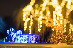 MCE_5368thlightsedge1jsm (JayEssEmm) Tags: tower hill botanic garden boylston massachusetts ma night christmas holiday lights