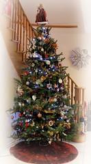 Christmas Tree is up! (Gillian Floyd Photography) Tags: christmas tree ornaments