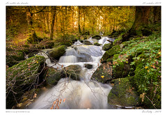 Cascades (BerColly) Tags: france auvergne vollore cascades vallée darots druides automne feuillage pauselongue water torrent bercolly google flickr