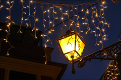 Christmas in the air ... (miriam ulivi - OFF/ON) Tags: miriamulivi panasonicdmctz60 italia liguria sestrilevante streetphotography lampione lamp christmaslights cielo sky blue
