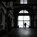 Antwerpen | 10.12.2019 (tom-s) Tags: streetphotography monochrome blackandwhite