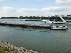 three passing boat on the Rhine (Tico Productions) Tags: spero riverrhine bonn ships rheinenergie boat