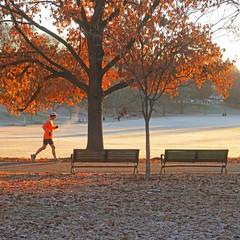 first frost (Jim_ATL) Tags: jogger orange jacket leaves piedmont park autumn atlanta