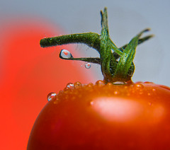 Tomato love (@magda627) Tags: rouge coth5 composition color nature water sony flickr red colors plant edit macro light anteketborkacom green czerwony droplet closeup heart drop reflection lightroom detail