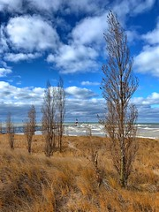 Tiscornia Beach in Autumn (mswan777) Tags: outdoor dune grass tree beach sky cloud water waves pier lighthouse horizon wind seascape st joseph michigan scenic apple iphone iphoneography mobile blue white