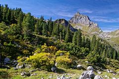 Mürtschenfurggel (Tjaldur66) Tags: mountains peak forest alpineforest rocks rockwall outdoor hiking wilderness nature switzerland swissalps kerenzerberg glarus