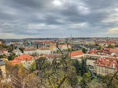 View From Prague Castle (davidseibold) Tags: cloud czechrepublic iphoneography jfflickr photosbydavid plant postedonflickr prague praha sky tree českárepublika